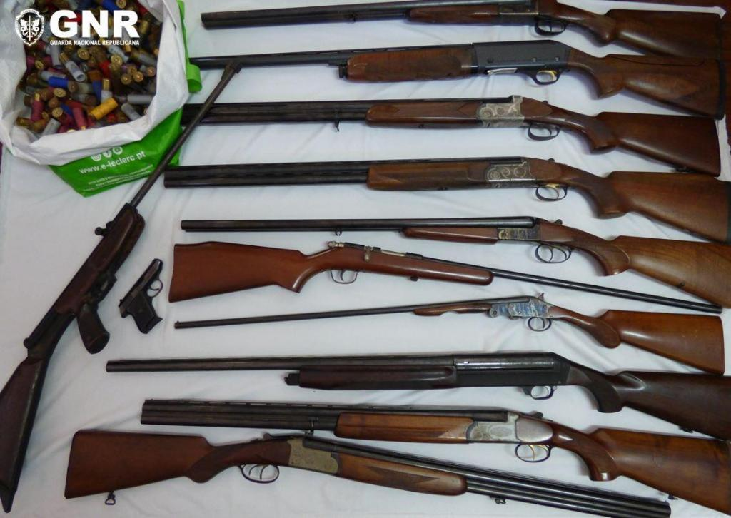 Apreensão de armas na Trofa