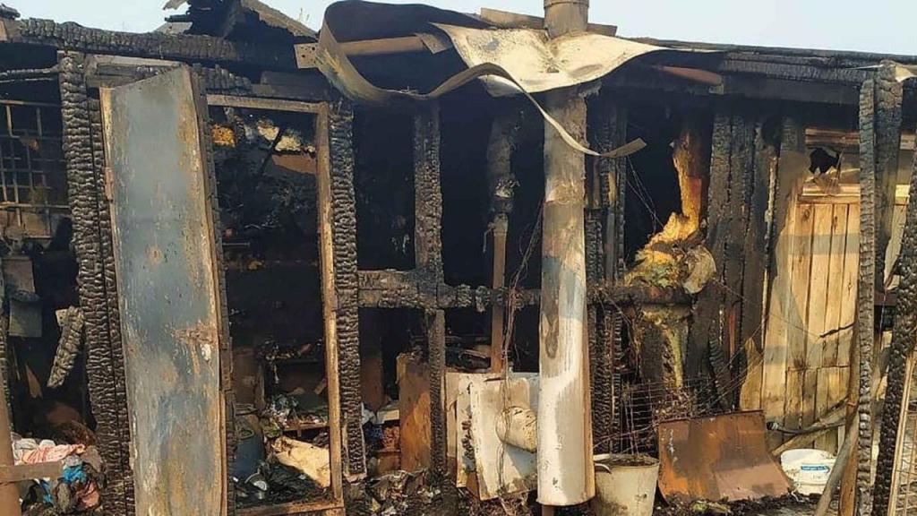 Incêndio em abrigo de animais na Rússia