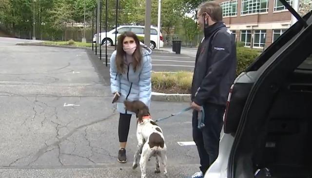 Repórter encontra cão desaparecido