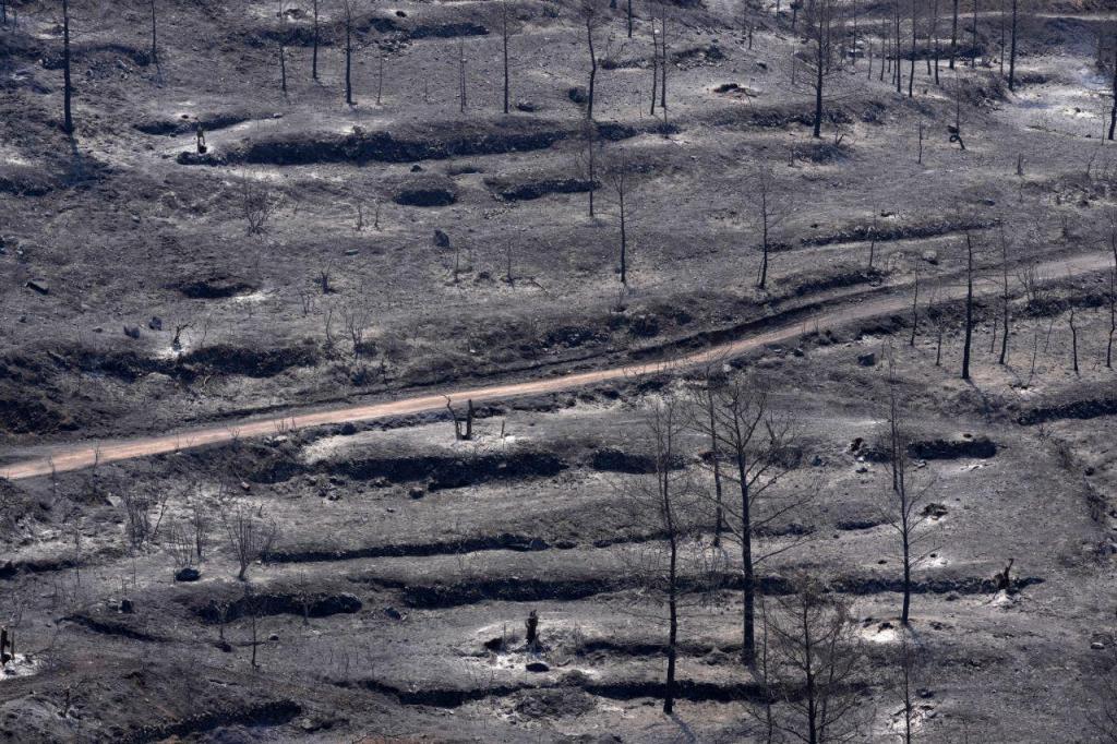 Bombeiros combatem o pior incêndio da história de Chipre