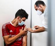 Plantel do Benfica vacinado contra a covid-19 (fotos: SLB)