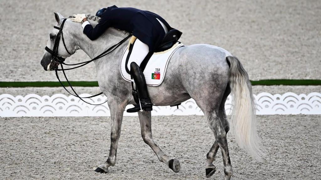 Rodrigo Torres 16.º no Grand Prix Freestyle de ensino em equestre