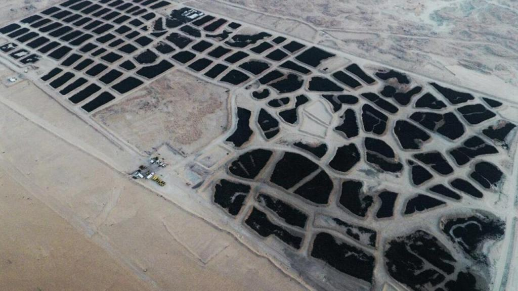 Maior cemitério de pneus do mundo