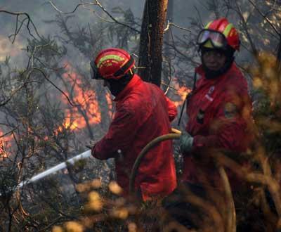 Fogo no Parque natural Sintra/Cascais - Foto de André Kosters para Lusa